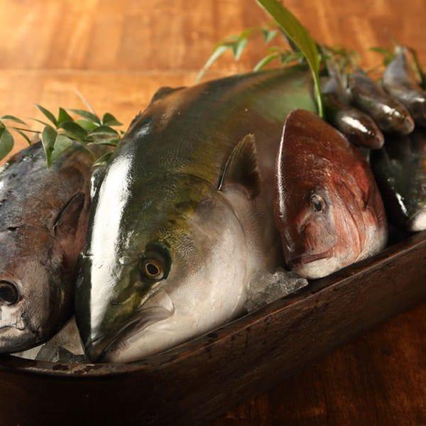 地魚&地野菜 新鮮な季節の味をご提供