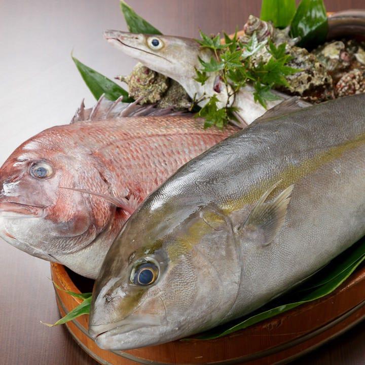 新鮮魚介を使用したお造りや寿司もコースでお愉しみいただけます