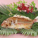 【お祝い料理】祝鯛(大)