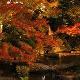 四季折々の表情を見せる庭苑をお愉しみください