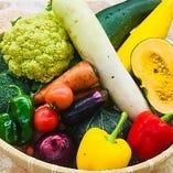 【石狩生降産】農場採れたて野菜【北海道石狩市生振】