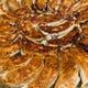 自家製味付き焼き餃子!皮はもっちり。特製の味付けがやみつき!