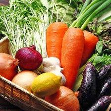 [旬野菜]契約農家直送のこだわり野菜