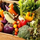 彩り豊かな野菜の中には自家栽培で育てたものも