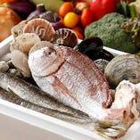 獲れたての新鮮な魚介類を贅沢に使用しています