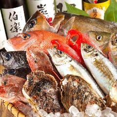 三代目 魚河岸 青木鮮魚店 鶴屋町店