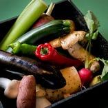 お肉やお魚はもちろん、新鮮野菜にもこだわります。