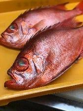 大将自ら仕入する、旬の近海地魚