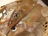 鮮度の抜群の魚介類
