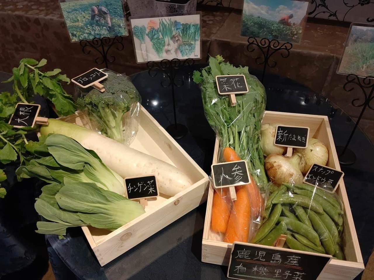 有機野菜をふんだんに使ったランチプレート♪