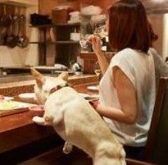 やさいや 鉄板焼野菜 六本木店 こだわりの画像