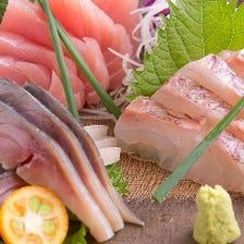 【旬の鮮魚】朝獲れ三浦鮮魚を堪能!