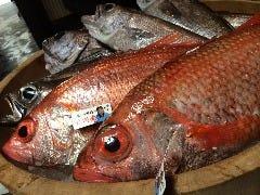 夢処 漁師めし 雑魚や