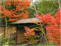 竹林と石畳の料亭 喜祥