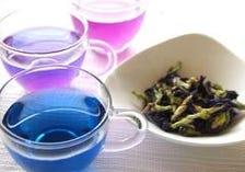 大好評!神秘の青いお茶!