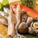 【市場で目利きし仕入れるその日の鮮魚】毎日、社長自ら市場に出向き、最旬のものを仕入れてご提供しております。季節の通常メニューの他にも『その日のおすすめ』メニューをご用意しております。
