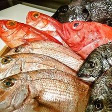 お刺身やお寿司で新鮮魚介を味わう