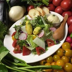 ◆本日の野菜ソムリエサラダ(日替わり)