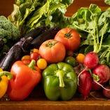 野菜ソムリエが厳選して仕入れる船橋の地場野菜【千葉県船橋市】