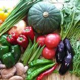季節に一番適した産地から直送した無農薬野菜を使用