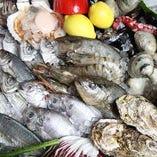 漁師さん直送!新鮮魚貝