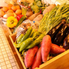 契約農園から毎日直送の新鮮なお野菜