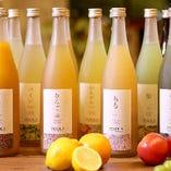27種の手仕込みコールドプレス製法の果実酒【国産】