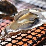 広島の名物《牡蠣》!海の栄養と旨味がぎゅっと濃縮されています