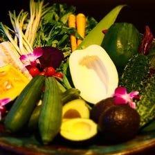 沖縄県産食材と約150種類のドリンク