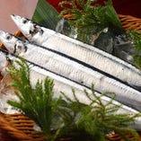 秋刀魚(季節限定)