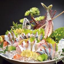 本渡・牛深・松島より活魚を調達