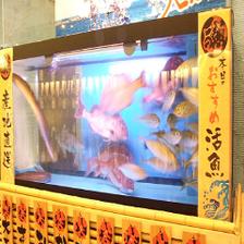★生簀完備★その場で調理新鮮鮮魚!