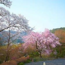 季節の風景を楽しめる8千坪の大庭園