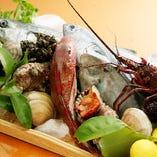 佐島(丸吉商店)より買い付ける鮮魚