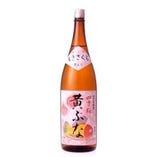 四季桜「黄ぶな」