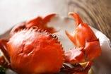 浜名湖名産として名高い『幻のどうまん蟹』。 正式名はトゲノコギリガザミで国内では浜名湖と高知が有名です 味は甘味・旨味がありとても濃厚で重いのに後味は軽い。普通の蟹と比べると特に蒸した時の香りが甘いのが特徴です。 希少価値の高い高級食材に気軽に出会えるのも凡猿ならでは