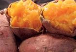 安納紅芋【鹿児島県種子島】