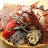 【旬鮮魚】 豊洲や産地から仕入れる魚介は鮮度抜群