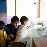さばらぼで学びながらお子様も一緒に餌やりをお楽しみください。