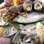 南紀の地魚を、南紀の魚問屋丸長水産がプライドをかけて目利き!