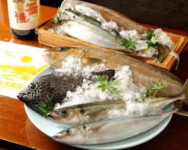 朝獲れ鮮魚と岩中豚 楠カンフォーラ  こだわりの画像