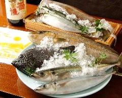 朝獲れ鮮魚と岩中豚 楠カンフォーラ