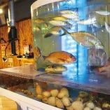 新鮮魚介を毎日仕入れてます!