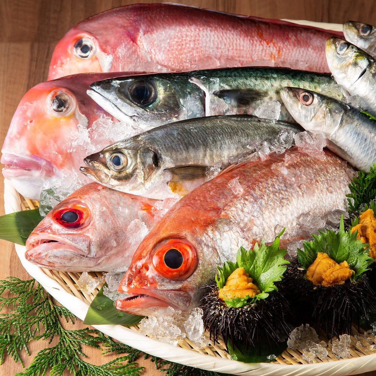 ◆当店は『魚市場直送認定店』です!