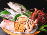 魚市場直送の厳選素材!【福岡県】