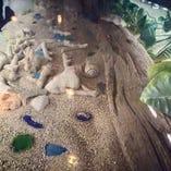 カウンターの下にも沖縄からの砂やビーチグラスが!!