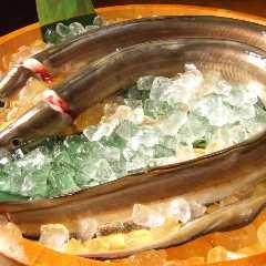 淺草 魚料理 遠州屋