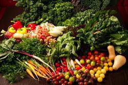 毎朝直送される三浦半島の新鮮野菜♪
