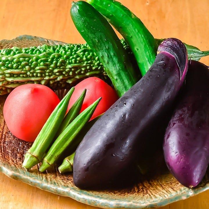 自社のおなか元気園で育む新鮮野菜