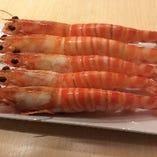 ◇旬の魚介 日本各地から取り寄せて